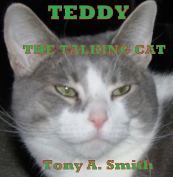IMG_0424 Teddy the Talking Cat Tony A Smith Final Final Green Last