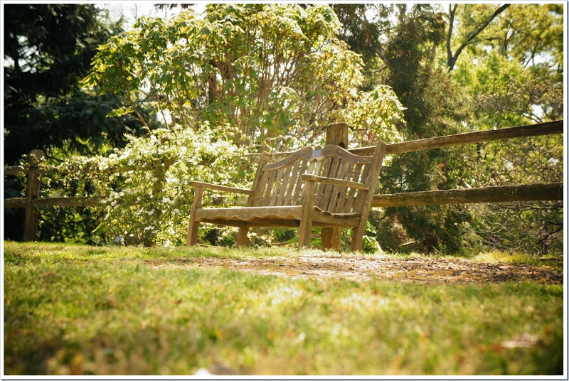 park-bench-free-pictures-1 (2621)_thumb
