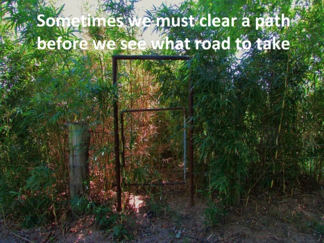 Clear the Path (1)