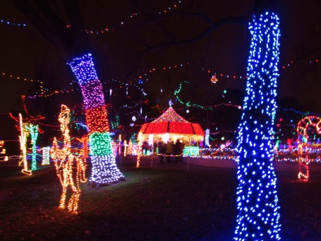 christmas-lights-rhema-2-1